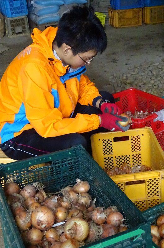 【活動訪問16】がんばろう福島、農業者等の会(2)